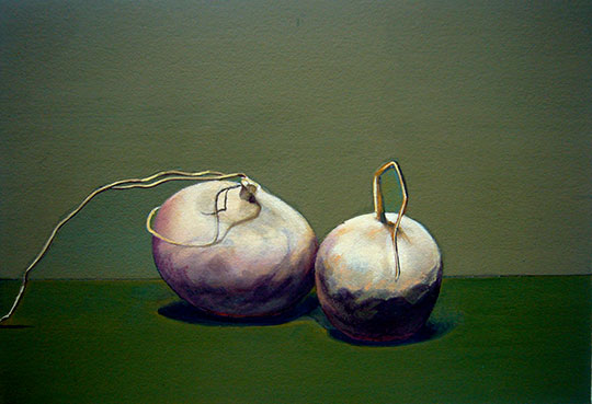 Kathleen E. Marshall - 2 Turnips Green Ground, Gouache on paper